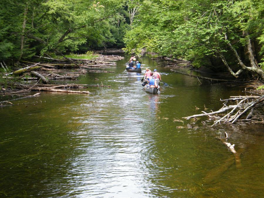 Fall Creek Motors >> Fish Creek Ponds Loop | St. Regis Canoe Outfitters