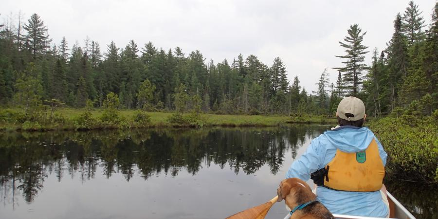 Long Pond with Hike up Long Pond Mountain   St  Regis Canoe